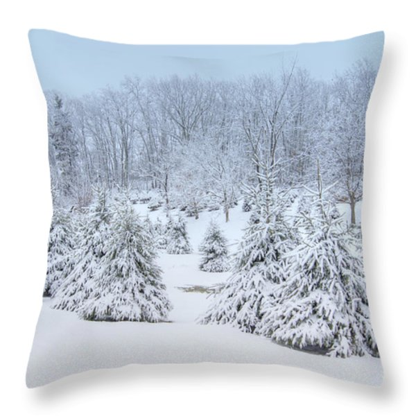 Winter Wonderland Throw Pillow by Benanne Stiens