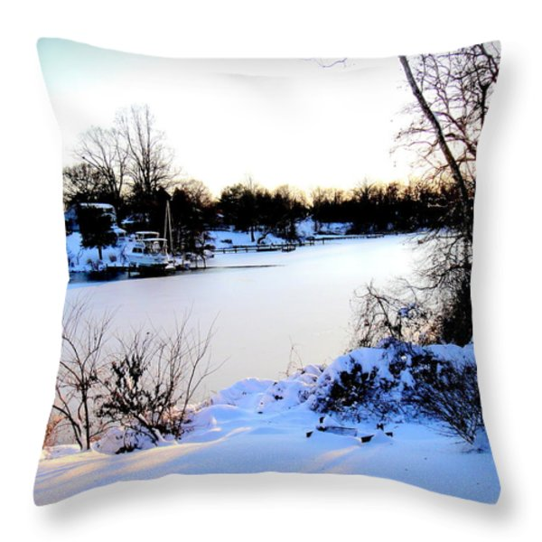 Winter Wonderland  In Maryland USA Throw Pillow by Danielle  Parent