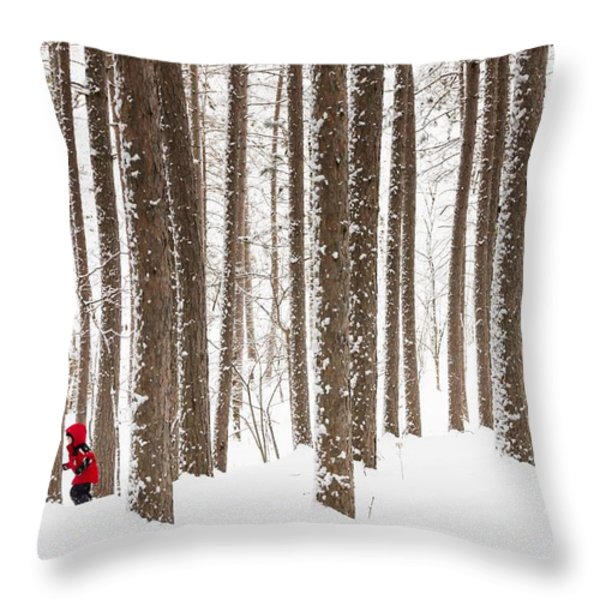 Winter Frolic Throw Pillow by Mary Amerman