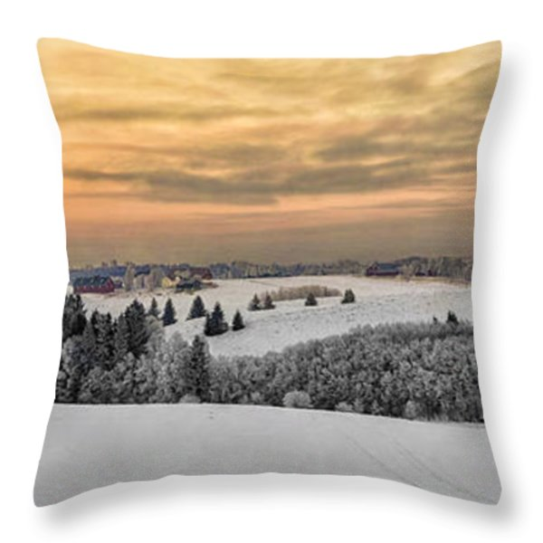 Winterland Throw Pillow by Erik Brede