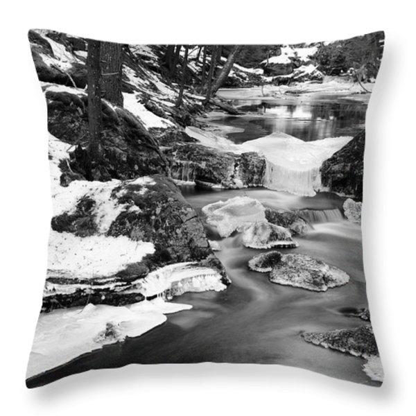 Winter's Grace Throw Pillow by Luke Moore