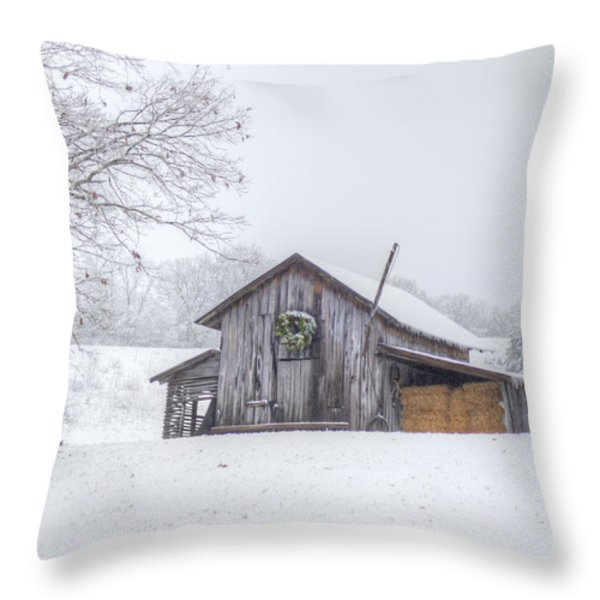 Winter's Past Throw Pillow by Benanne Stiens