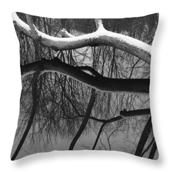 Winter's Touch Throw Pillow by Luke Moore