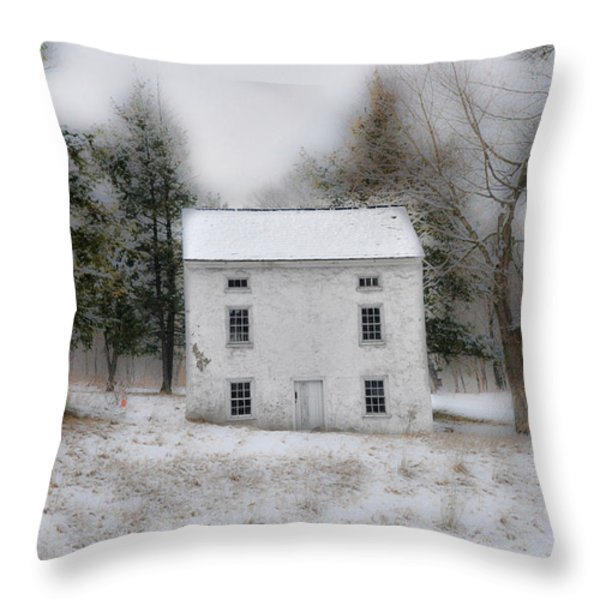 Wintertime in Valley Forge Throw Pillow by Bill Cannon