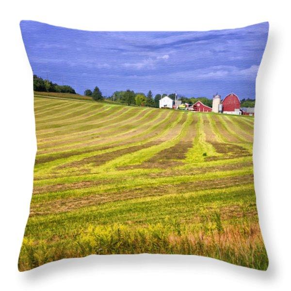 Wisconsin Dawn Throw Pillow by Joan Carroll