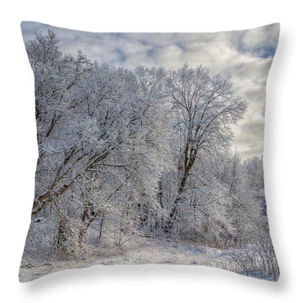 Wisconsin Winter Throw Pillow by Joan Carroll