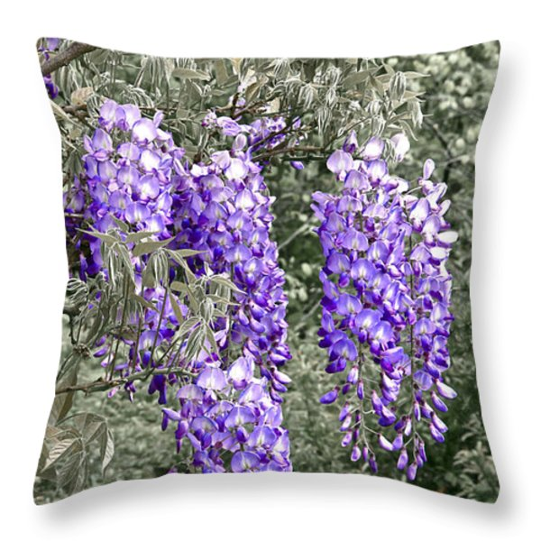 Wisteria Blossom Clusters Abstract Throw Pillow by Byron Varvarigos