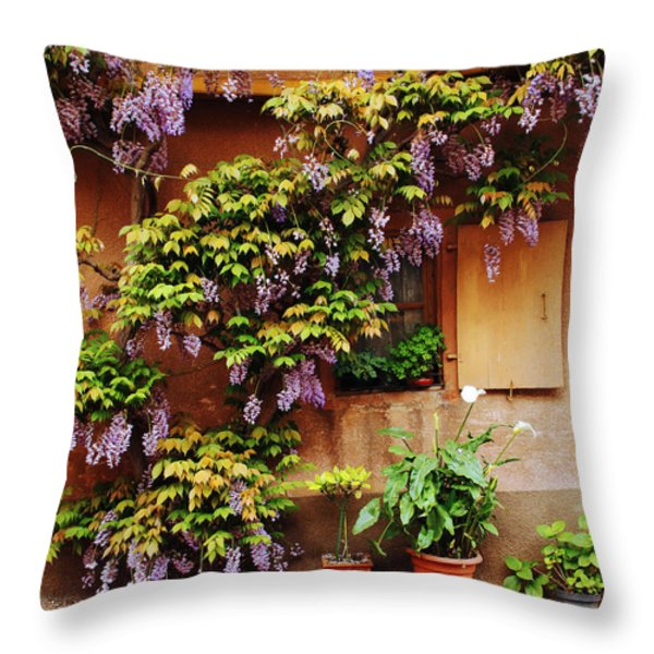 Wisteria on Home in Zellenberg 4 Throw Pillow by Greg Matchick