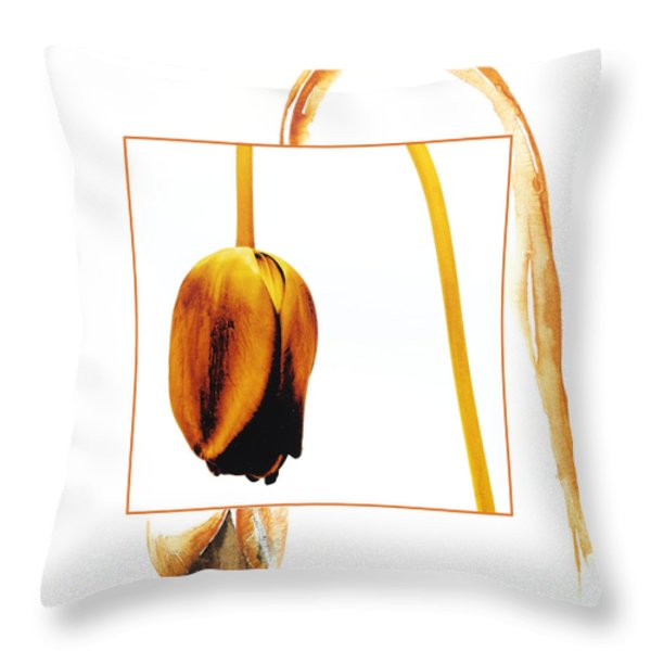 Withered Tulip Flower. Vintage-look Throw Pillow by Bernard Jaubert