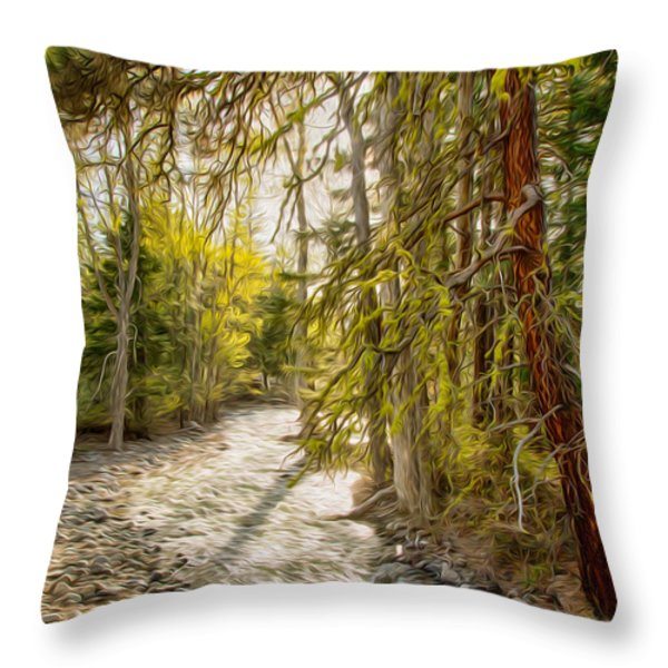 Wolf Creek Afternoon Light Throw Pillow by Omaste Witkowski