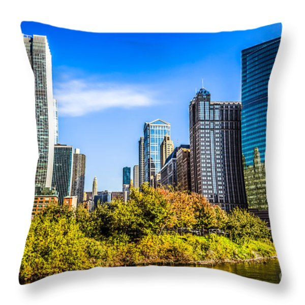 Wolf Point In Chicago Throw Pillow by Paul Velgos