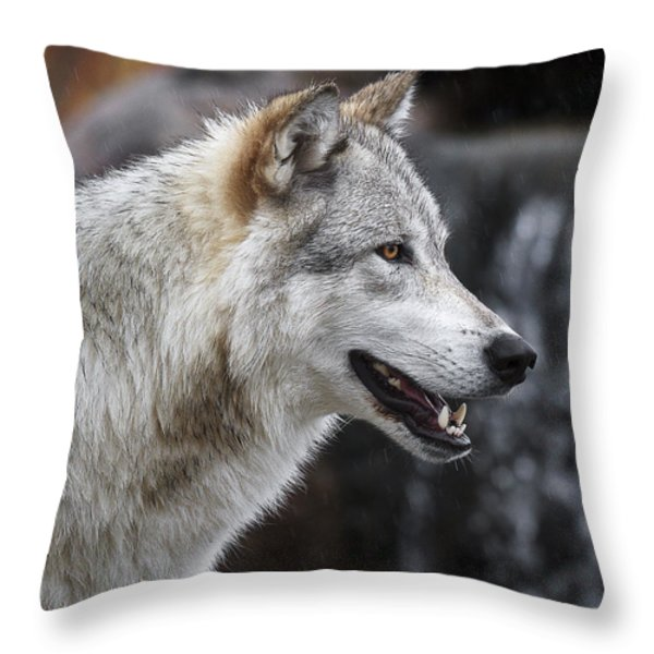 Wolf Smile D9933 Throw Pillow by Wes and Dotty Weber