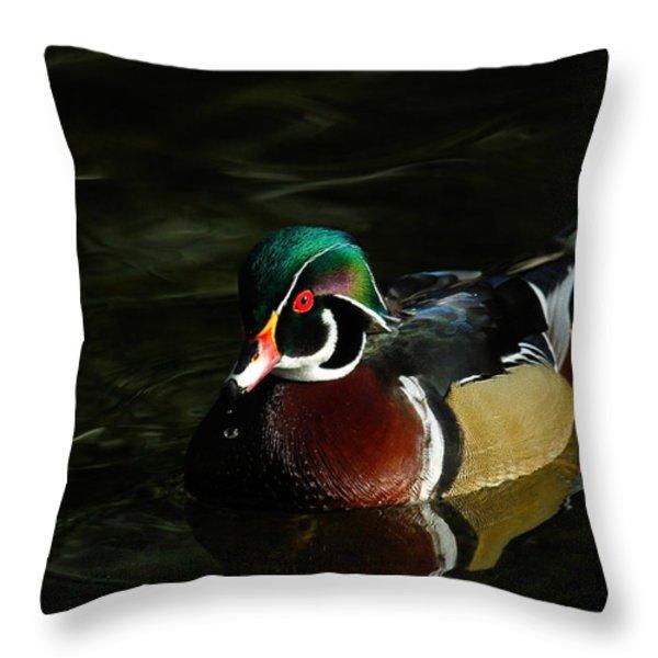 Wood Duck Drip Throw Pillow by Steve McKinzie