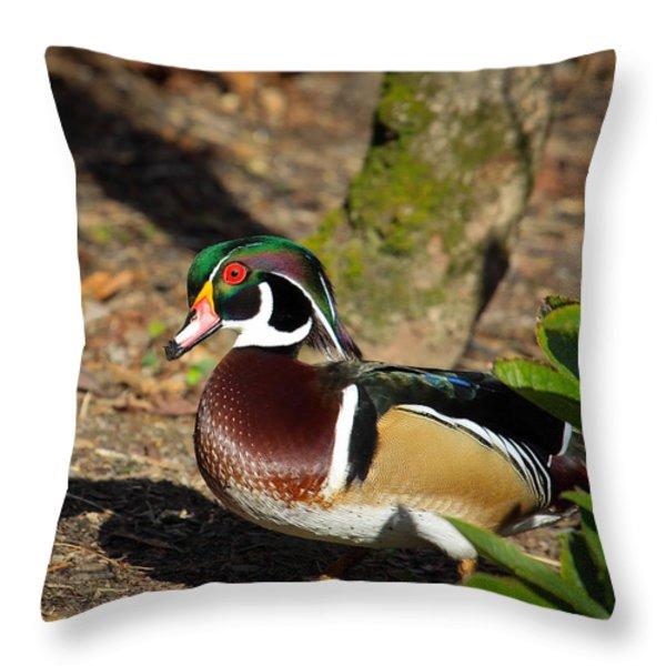 Wood Duck In Hiding Throw Pillow by Steve McKinzie
