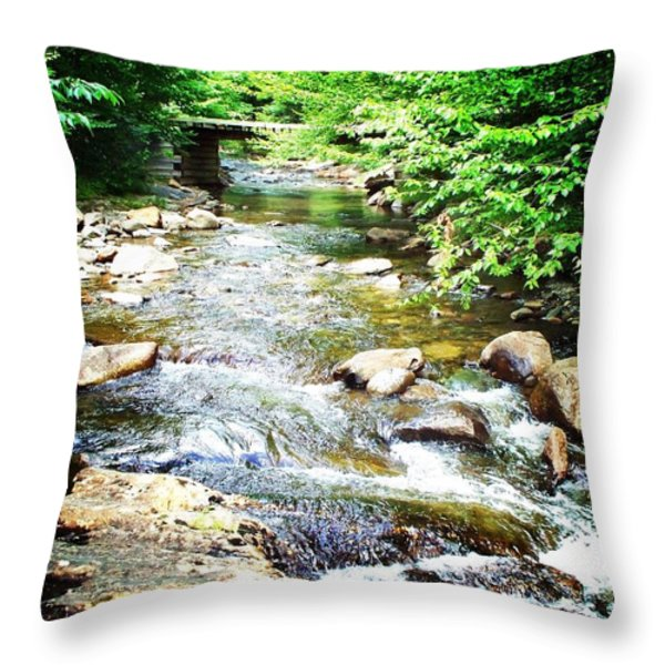 Wooden Bridge Throw Pillow by Joy Nichols
