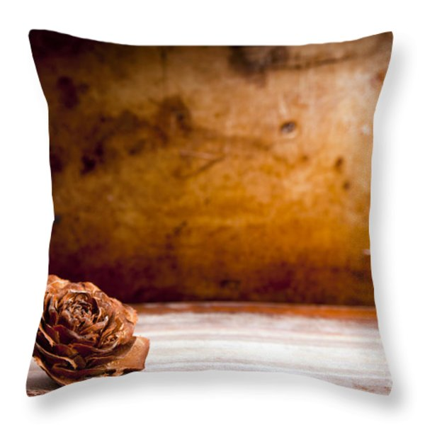 Wooden Rose Background Throw Pillow by Tim Hester