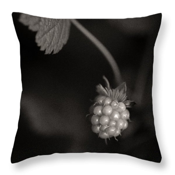 Woodland - Study 10 Throw Pillow by Dave Bowman