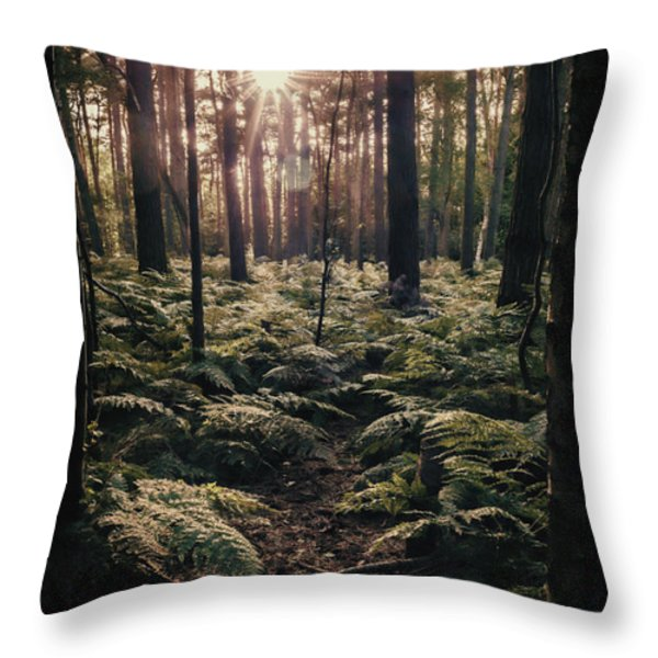 Woodland Trees Throw Pillow by Amanda And Christopher Elwell