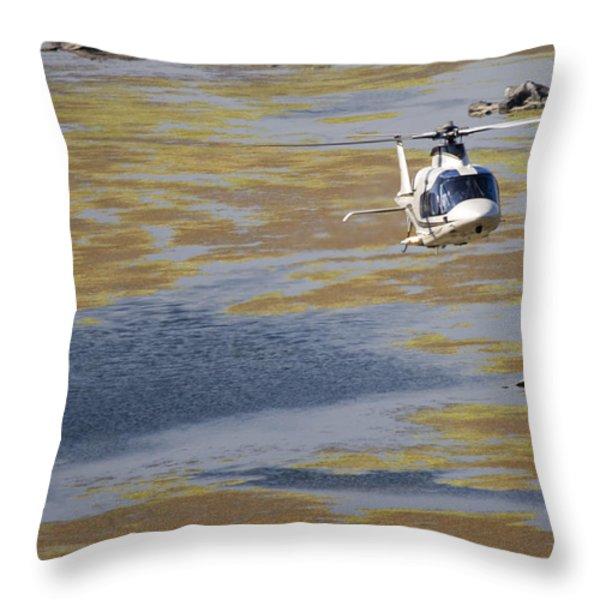 Work Of Art Throw Pillow by Paul Job
