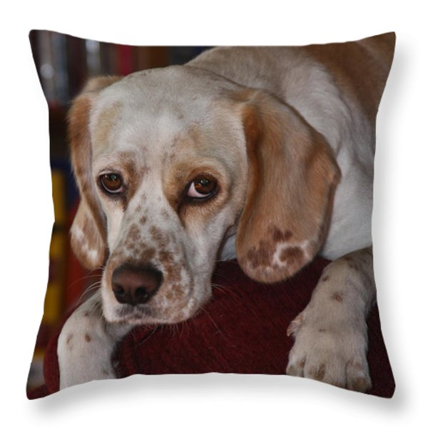 Would You Abandon Me? Throw Pillow by Mark Alder