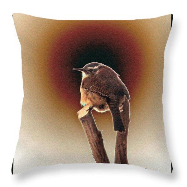Wren at Sundown Throw Pillow by Sue Melvin
