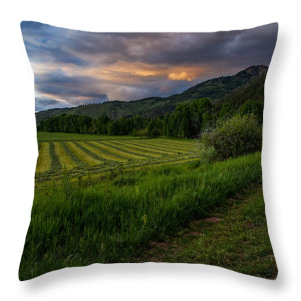 Wyoming Pastures Throw Pillow by Chad Dutson