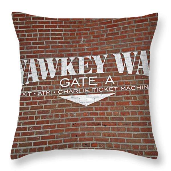 Yawkey Way Throw Pillow by Barbara McDevitt