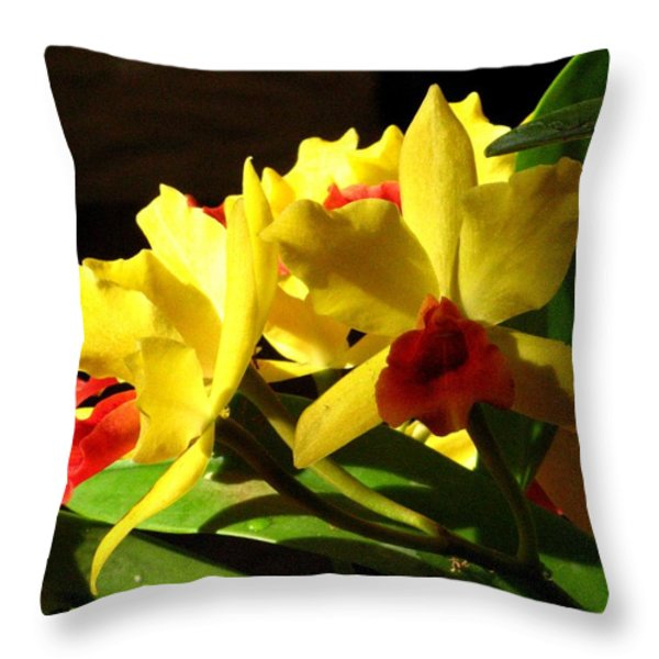 Yellow Cattleya Orchid Throw Pillow by Alfred Ng