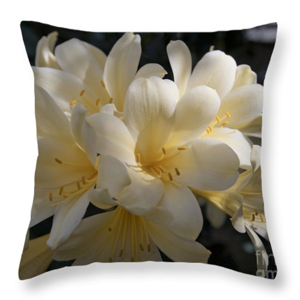 Yellow Clivia 1004 Throw Pillow by Terri Winkler