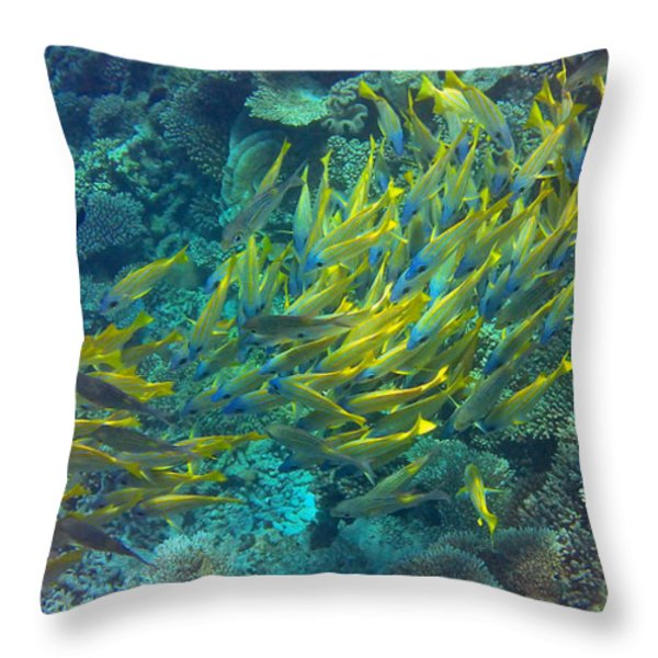 Yellow Throw Pillow by Corinne Rhode