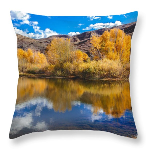 Yellow Fall Reflections Throw Pillow by Robert Bales