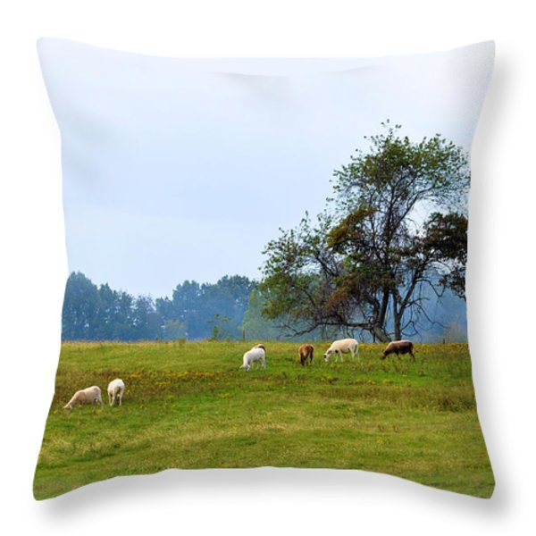 Yellow Fields Throw Pillow by Jan Amiss Photography