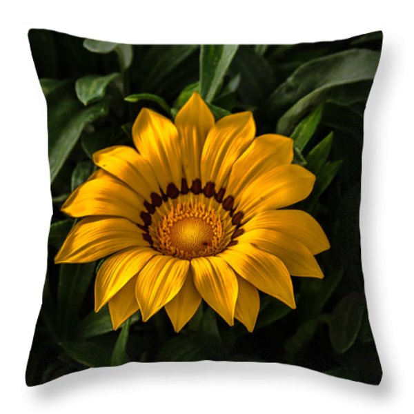 Yellow Gazania Throw Pillow by Robert Bales