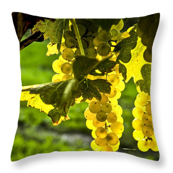 Yellow grapes in sunshine Throw Pillow by Elena Elisseeva