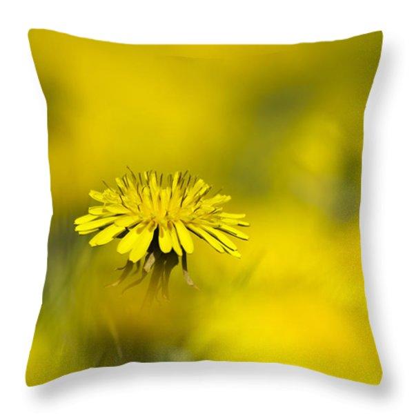 Yellow on Yellow Dandelion Throw Pillow by Christina Rollo