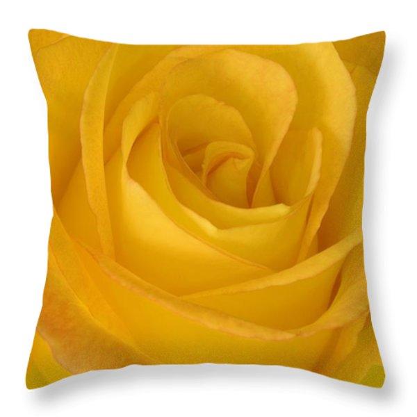 Yellow Tea Rose Throw Pillow by John Pitcher