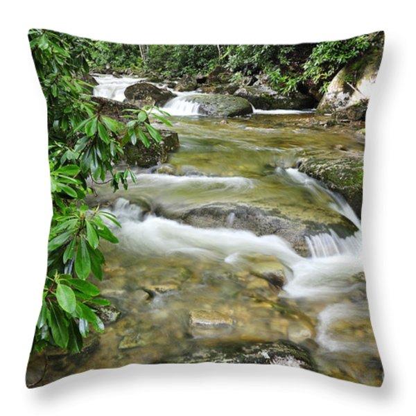 Yesterday Throw Pillow by Thomas R Fletcher