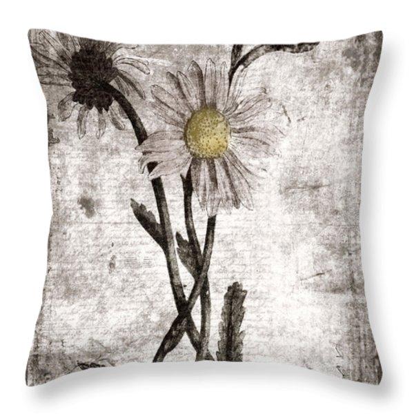 Yesterday's Garden II Throw Pillow by Bonnie Bruno