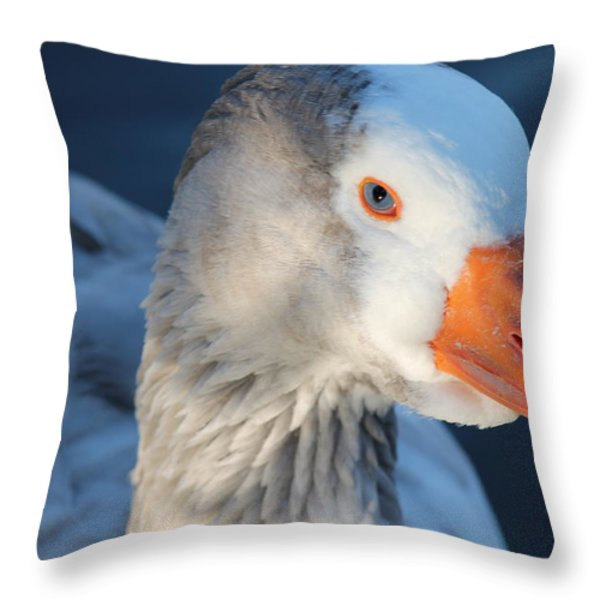 You Looking At Me Throw Pillow by Lorri Crossno