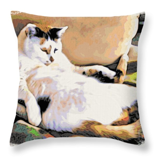 You Move The Stuff From The Corrner. I Need My Nap. Throw Pillow by Phyllis Kaltenbach