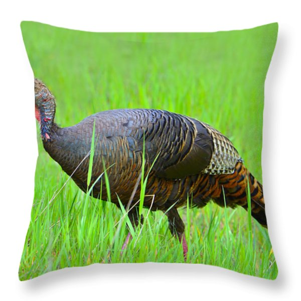 Young and Wild Throw Pillow by Tony Beck
