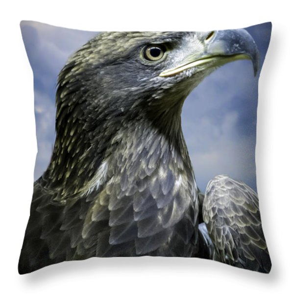 Young Bald Eagle Throw Pillow by F Leblanc