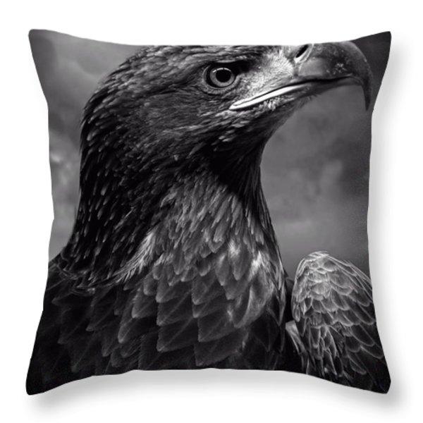 Young Bald Eagle V4 Throw Pillow by F Leblanc