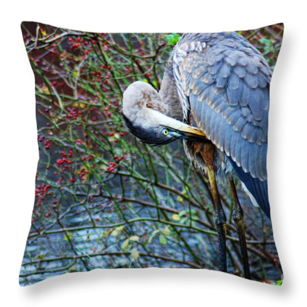 Young Blue Heron Preening Throw Pillow by Paul Ward