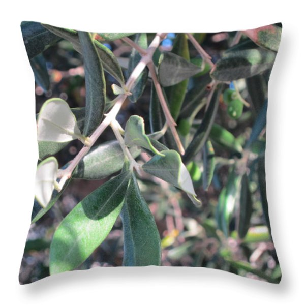 Young Olives Throw Pillow by Pema Hou