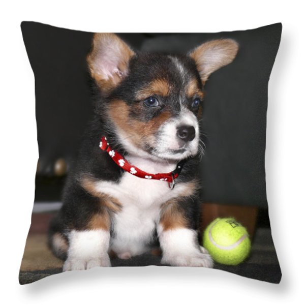 Young Otis Ray Throw Pillow by Mike McGlothlen