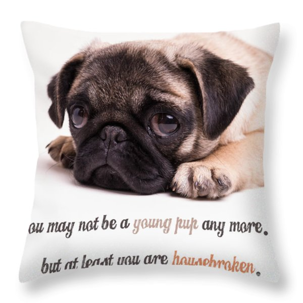 Young Pup Throw Pillow by Edward Fielding