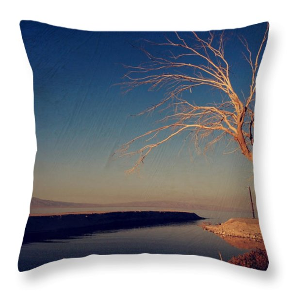 Your One and Only Throw Pillow by Laurie Search
