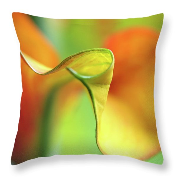 Zantedeschia Throw Pillow by Juergen Roth