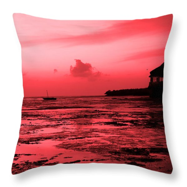 Zanzibar Sunrise Throw Pillow by Aidan Moran